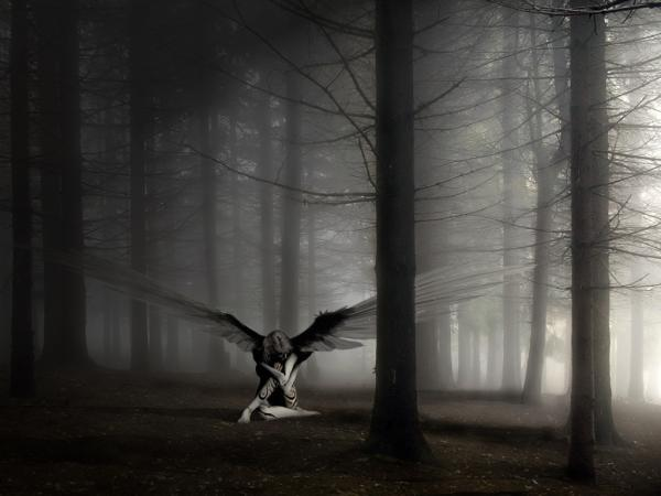 Angel In Black Forest, Angels 4