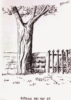 Sketch of a tree with Rotring Art Pen