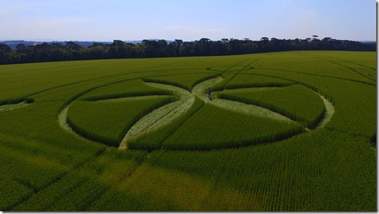 Crop Circle Ademar Jose Gevaerd