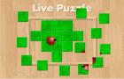 Live Puzzle