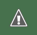 google logo 150 Pana si Google are probleme cu serverele ...