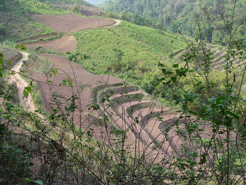 Chine: randonnée xishangbanna, région de Bada - Picture1%2B962.jpg