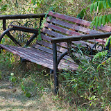 bench_MG_9872-copy.jpg