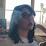 Tari Cline's profile photo