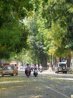 5 most beautiful streets of Hanoi