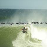 _DSC0547.thumb.jpg