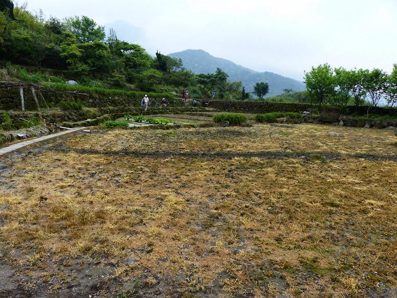 Yangminshan Shitoushan et Jinshan - P1040938.JPG