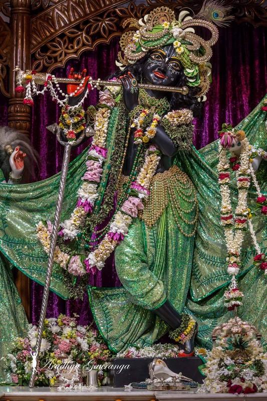 ISKCON Mayapur Deity Darshan 08 April 2016 (14)