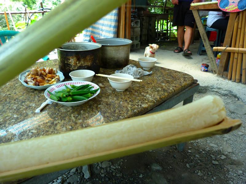Hualien County. Tongmen village, Mu Gua ci river, proche de Liyu lake J 4 - P1240333.JPG