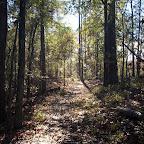 hike_westFlaBoundary_11-28-07