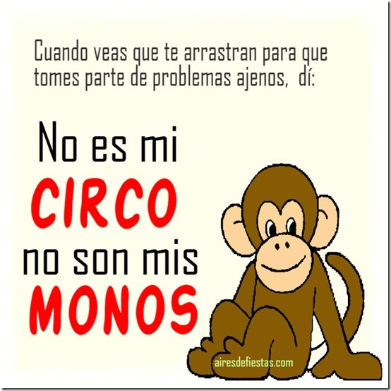 mis monos 455t