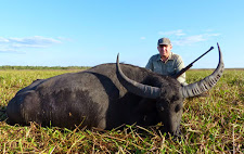 Evgeny Katkov, Russia with a big buffalo cow on the Carmor plains.