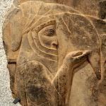 Persépolis (Iran) - Porteur d'outre, fragement de la procession de serviteurs apportant les mets du banquet sculptée sur le mur d'un escalier d'un palais de Persépolis (calcaire, règne de Darius Ier ou Xercès Ier - 521-465 av. J.-C.)