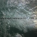 DSC_1942.thumb.jpg