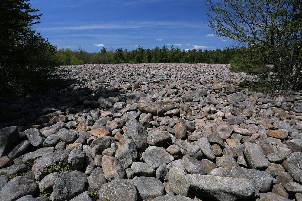 Hickory Run State Park: O Campo de Rochas