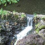 Hawaii Day 5 - 114_1498.JPG