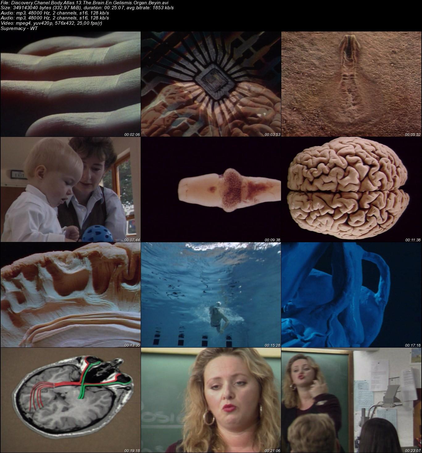 Discovery Channel Body Atlas - Vücut Atlası VCD Türkçe