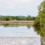 20140510_Fishing_Stara_Moshchanytsia_032.jpg
