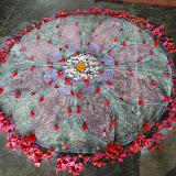 Matri Puja 2014-15 VKV Sher (1).JPG