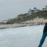 DSC_5245.thumb.jpg