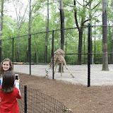 Zoo Snooze 2015 - IMG_7249.JPG