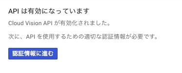 google_vision_api2.png