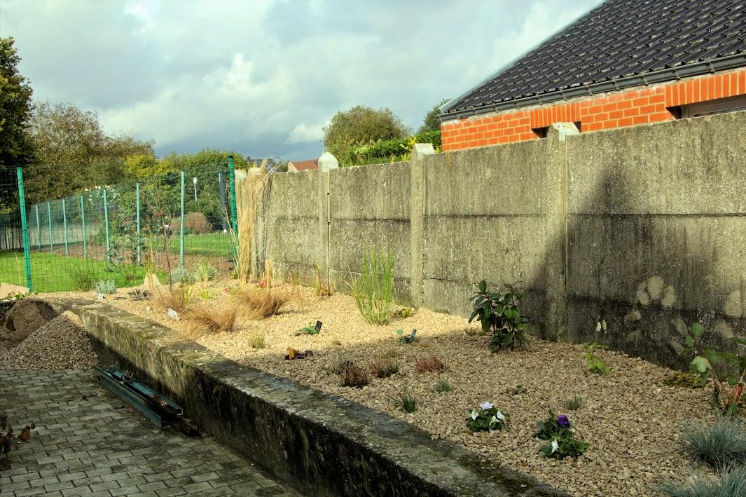 Nouvelle maison dit aussi nouveau jardin... IMG_0153
