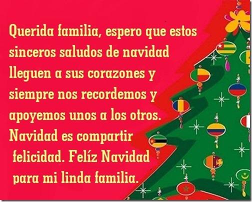 navidad (82)