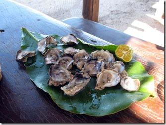cumuruxatiba-coendo-ostras-2