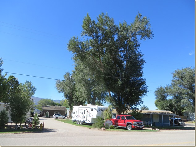 Red Ledge RV Park And Just Our Style Across The Street There Are Horses Llamas A Sheep Grazing Like Home