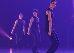 Han Balk Voorster dansdag 2015 avond-3174.jpg