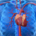 Real facts about Cardiovascular diseases