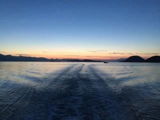 un sacco di pesce nel mare che risale Canada la mia ragazza sta uscendo con il mio migliore amico
