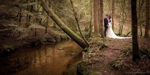Photographe de mariage Valerie Raynaud (valerieraynaud). Photo du 29.08.2017