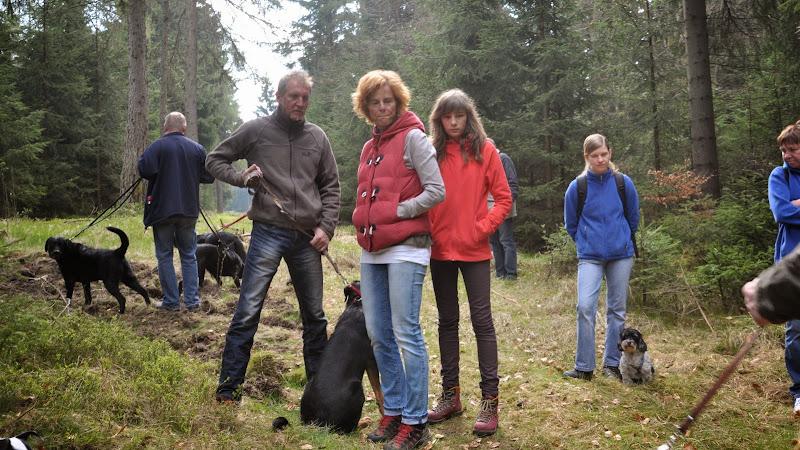 2014-04-13 - Waldführung am kleinen Waldstein (von Uwe Look) - DSC_0425.JPG