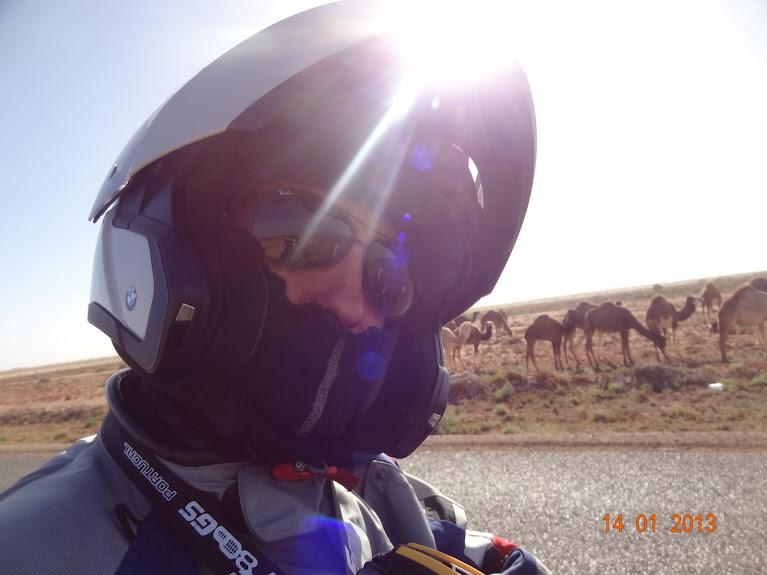 Marrocos e Mauritãnia a Queimar Pneu e Gasolina - Página 5 DSC05806