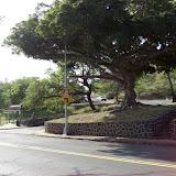 Hawaii Day 2 - 100_6544.JPG