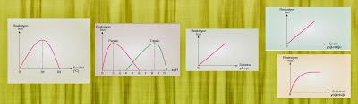 enzim reaksiyonları grafikleri