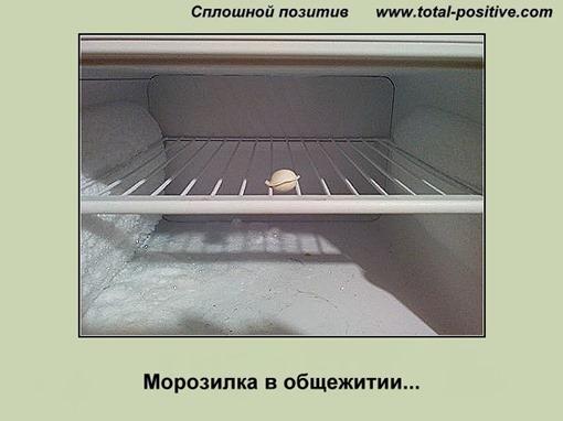 Одинокая пельмешка в морозилке