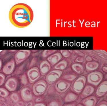 كتاب histology pdf