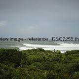 _DSC7255.thumb.jpg