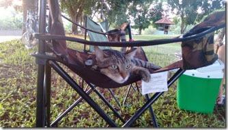 fredy-cadeira-campista