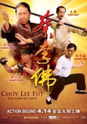 Choy Lee Fut - Lò võ trung hoa
