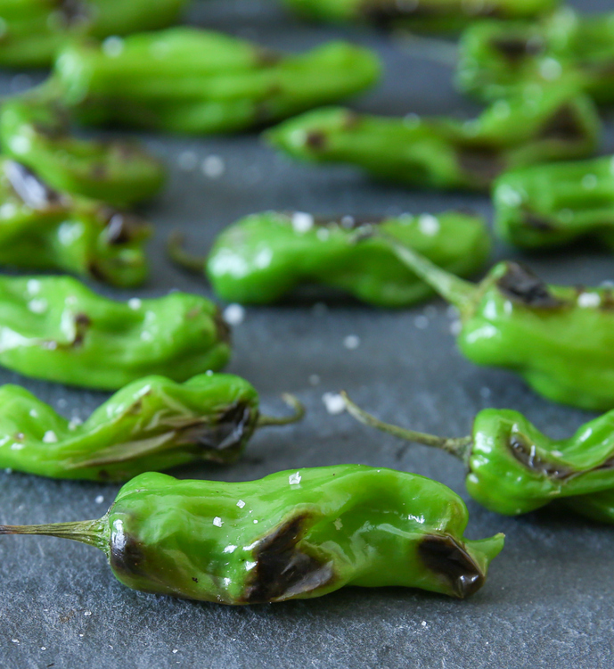 photo of Sauteed Blistered Shishito Peppers