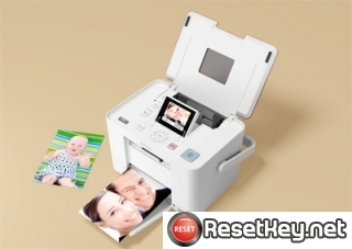Reset Epson PM250 printer Waste Ink Pads Counter
