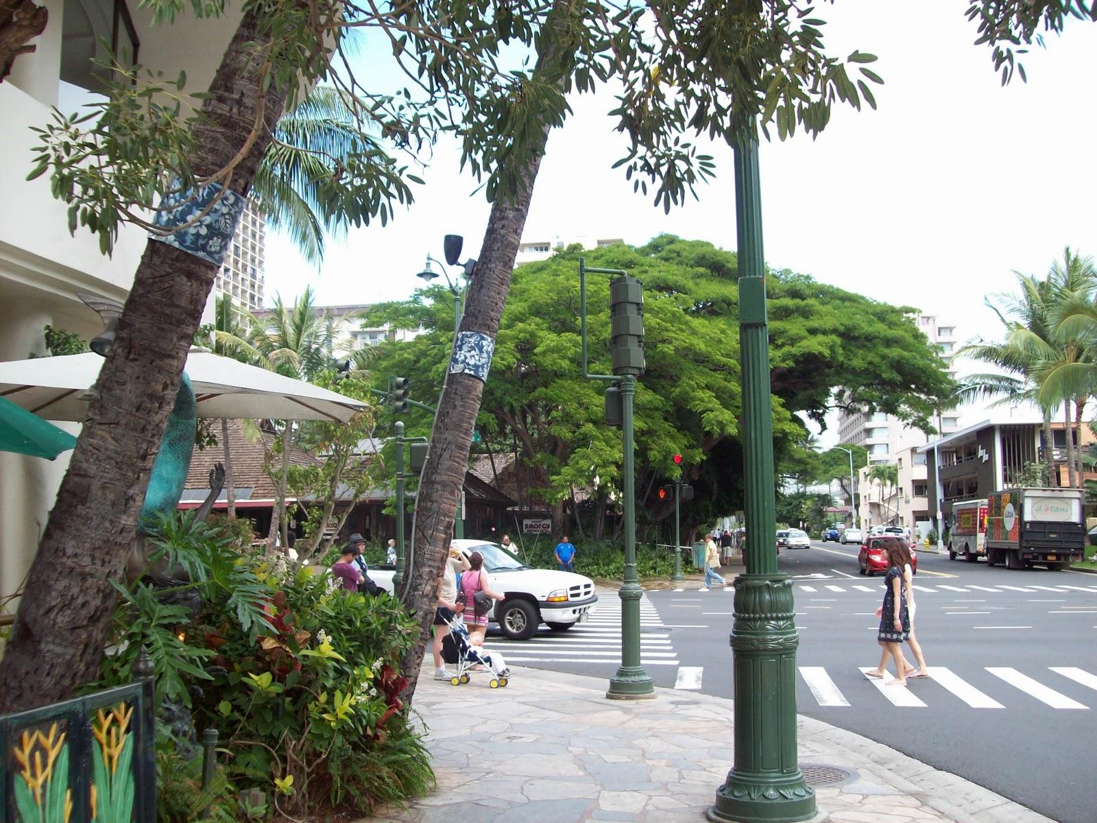 Hawaii Day 2 - 114_0977.JPG
