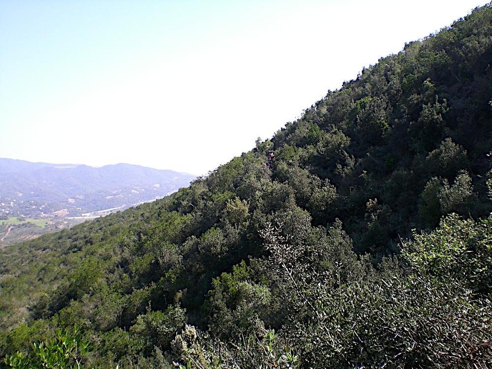 Sortida Sant Salvador de les espasses 2006 - CIMG8386.JPG