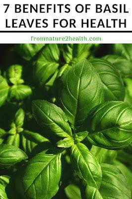 Basil Leaves for Cancer, Basil Leaves for Stress, Basil Leaves Vitamin A