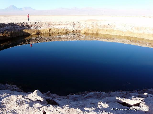 Laguna Cejar - P1010435.JPG