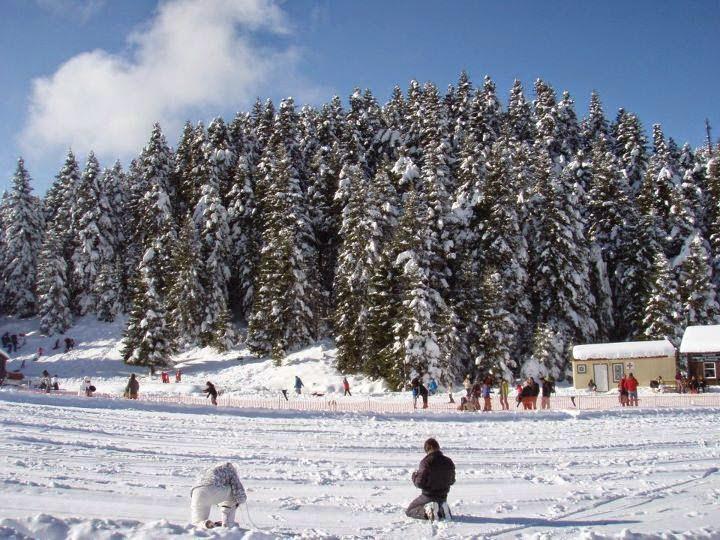 Χιονοδρομικό Κέντρο Περτουλίου 4